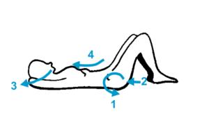 muscler les abdominaux