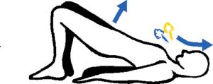 photo d'un exercice de musculation contre les douleurs de dos